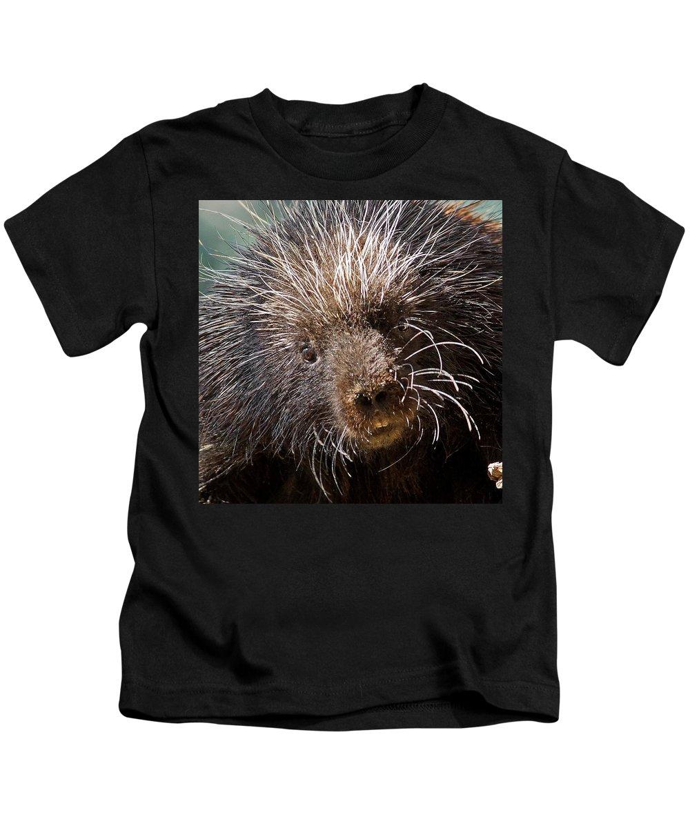 Porcupine Kids T-Shirt featuring the photograph Porcupine by Ernie Echols
