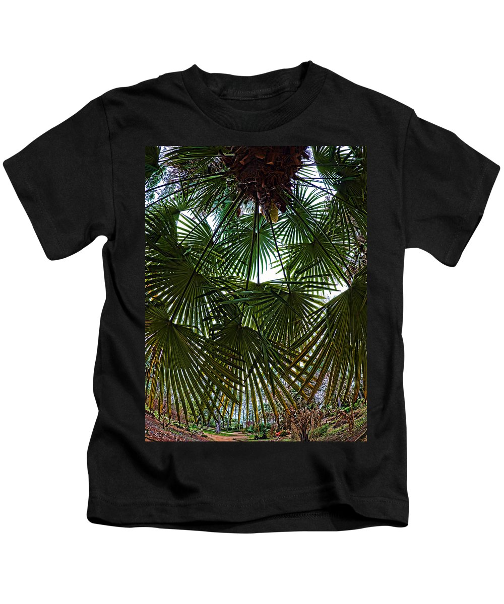 Palm Tree Kids T-Shirt featuring the photograph Protecting Palms by Tina Baxter