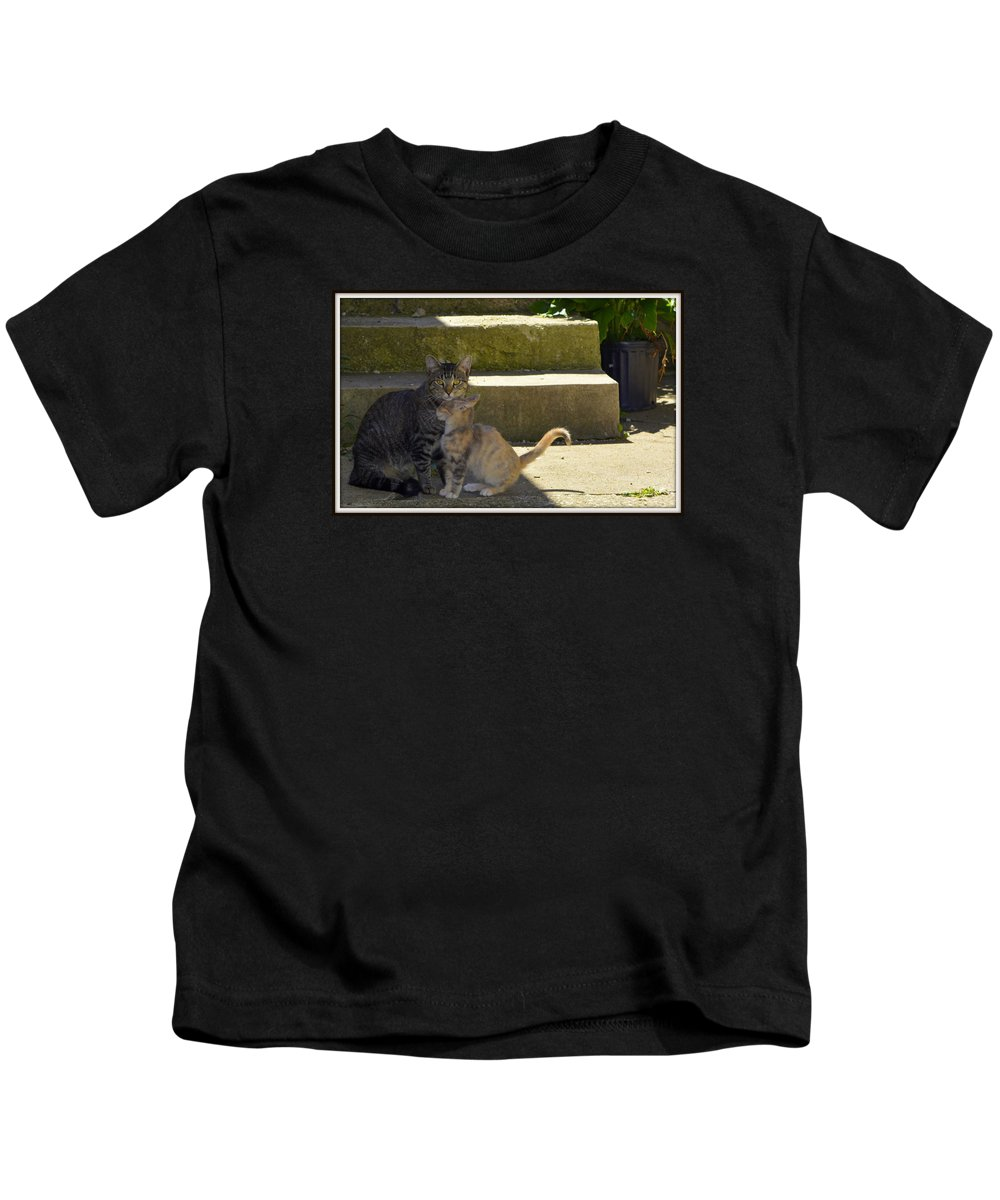Cat Kids T-Shirt featuring the photograph Protection by Kathy Barney