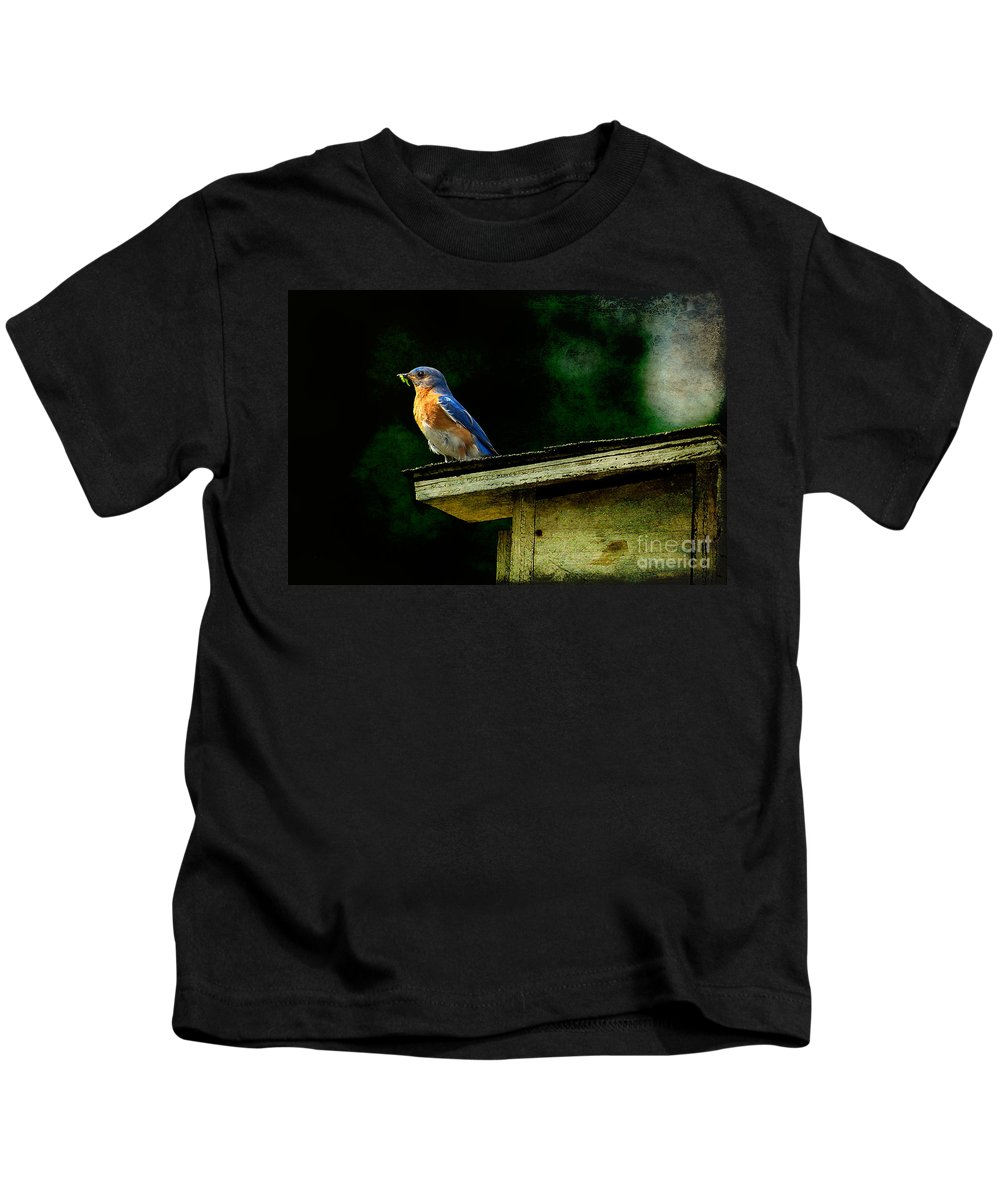Lois Bryan Kids T-Shirt featuring the photograph Proud Provider by Lois Bryan