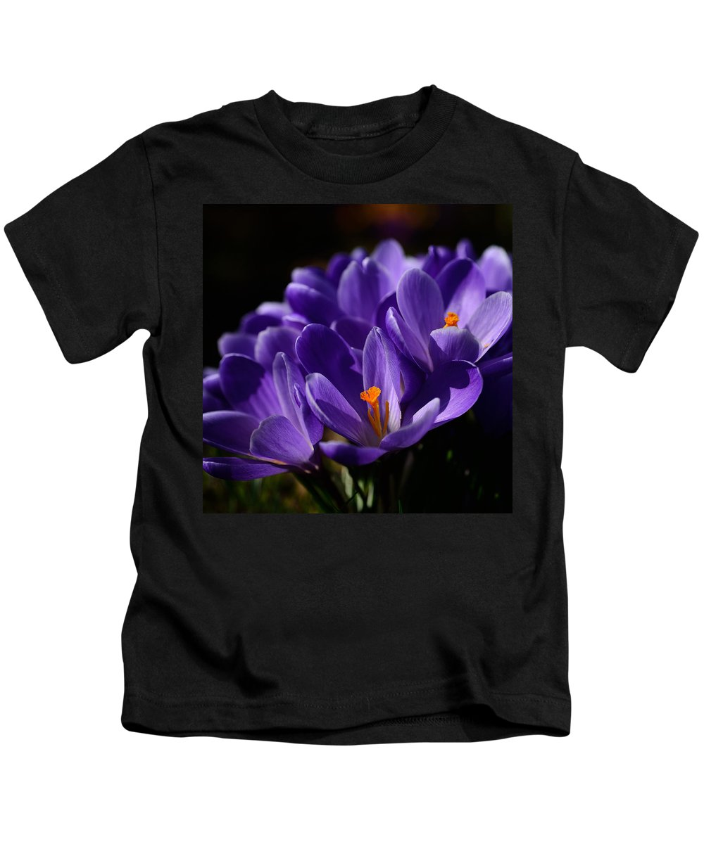 Flower Kids T-Shirt featuring the photograph Purple Crocuses On A Spring Day by TouTouke A Y