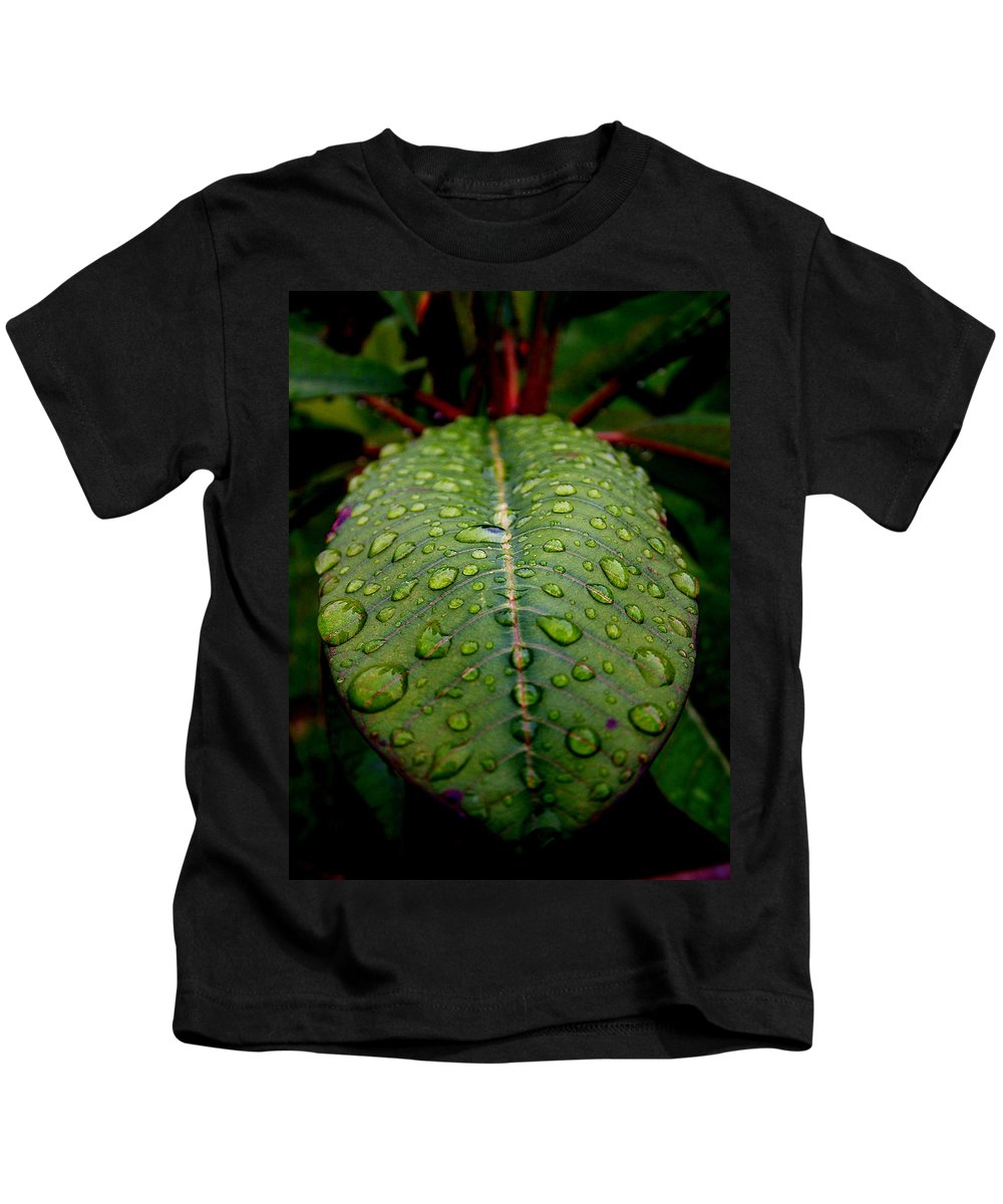 Leaf Kids T-Shirt featuring the photograph Quenched by David Weeks