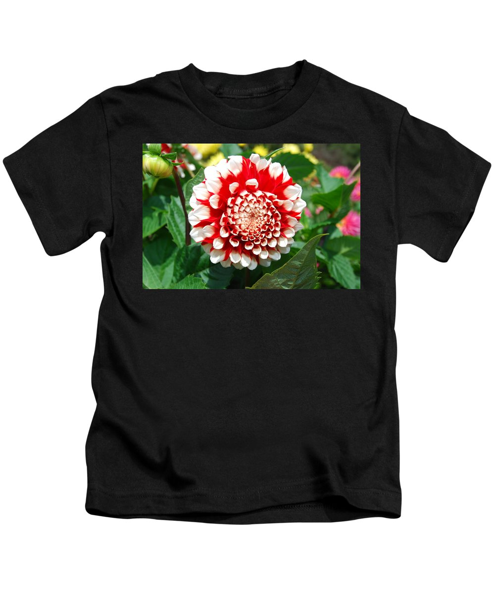 Red Kids T-Shirt featuring the photograph Red And White Flower by Bradley Bennett
