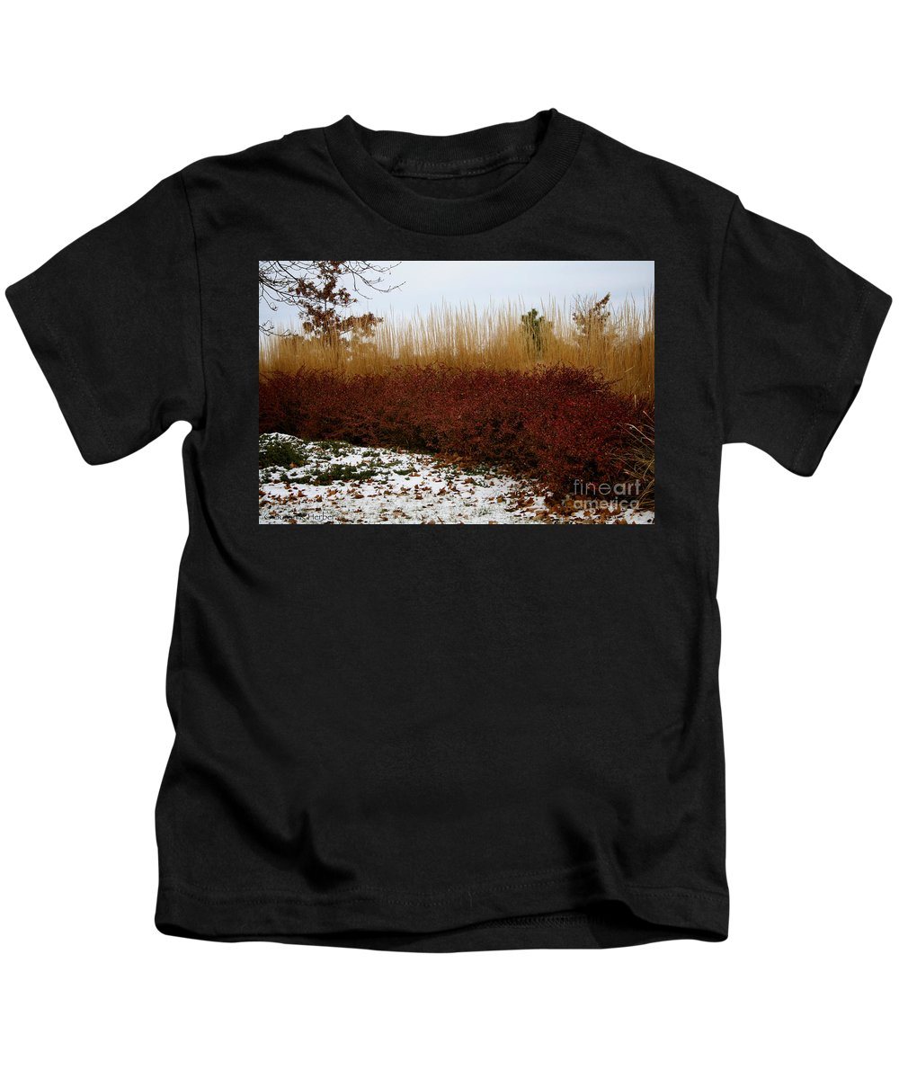 Outdoors Kids T-Shirt featuring the photograph Red Gold Hedge by Susan Herber