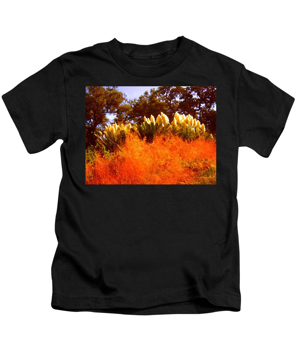 Landscapes Kids T-Shirt featuring the painting Red Grass by Amy Vangsgard