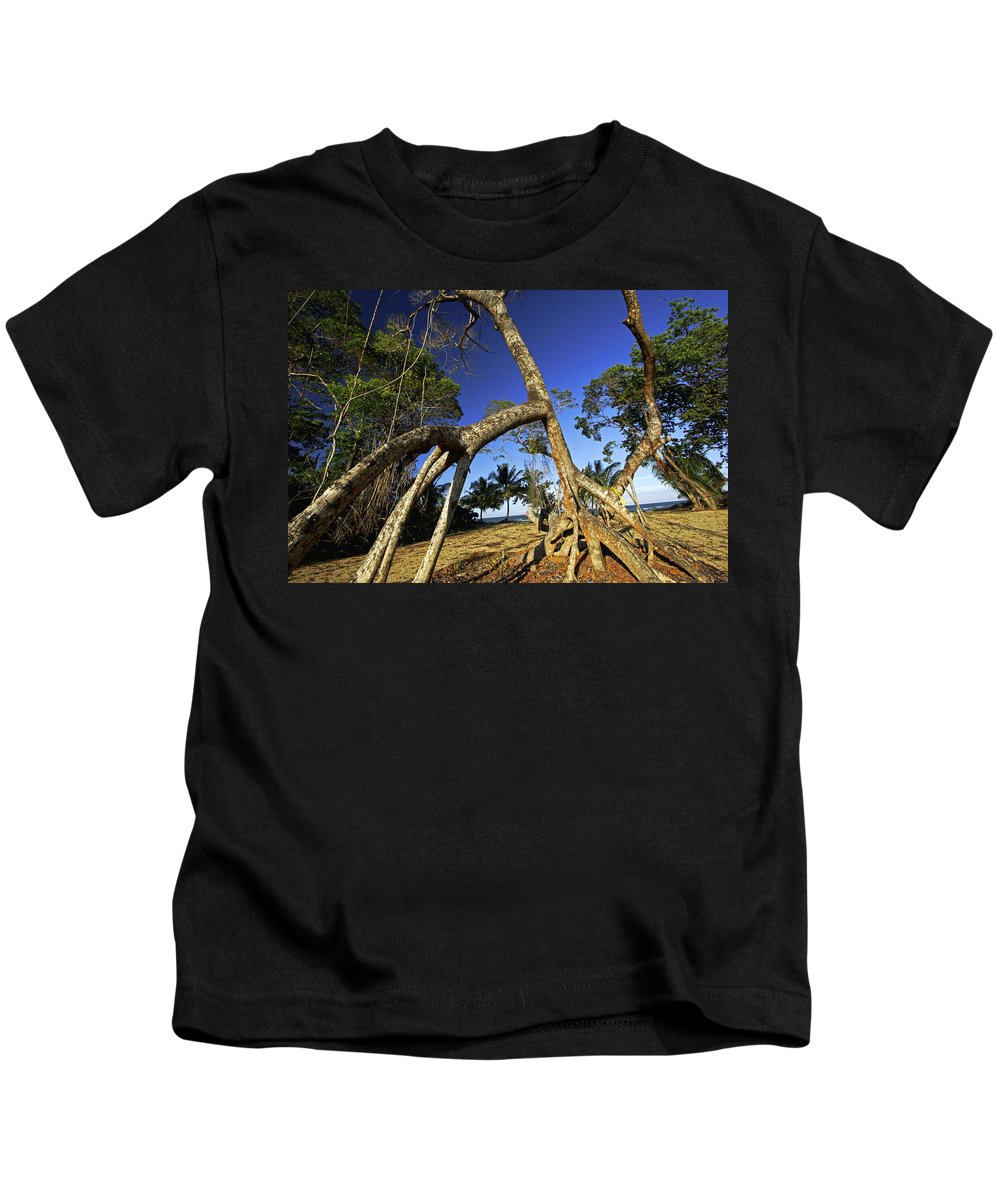 Mp Kids T-Shirt featuring the photograph Red Mangrove Aerial Roots by Christian Ziegler