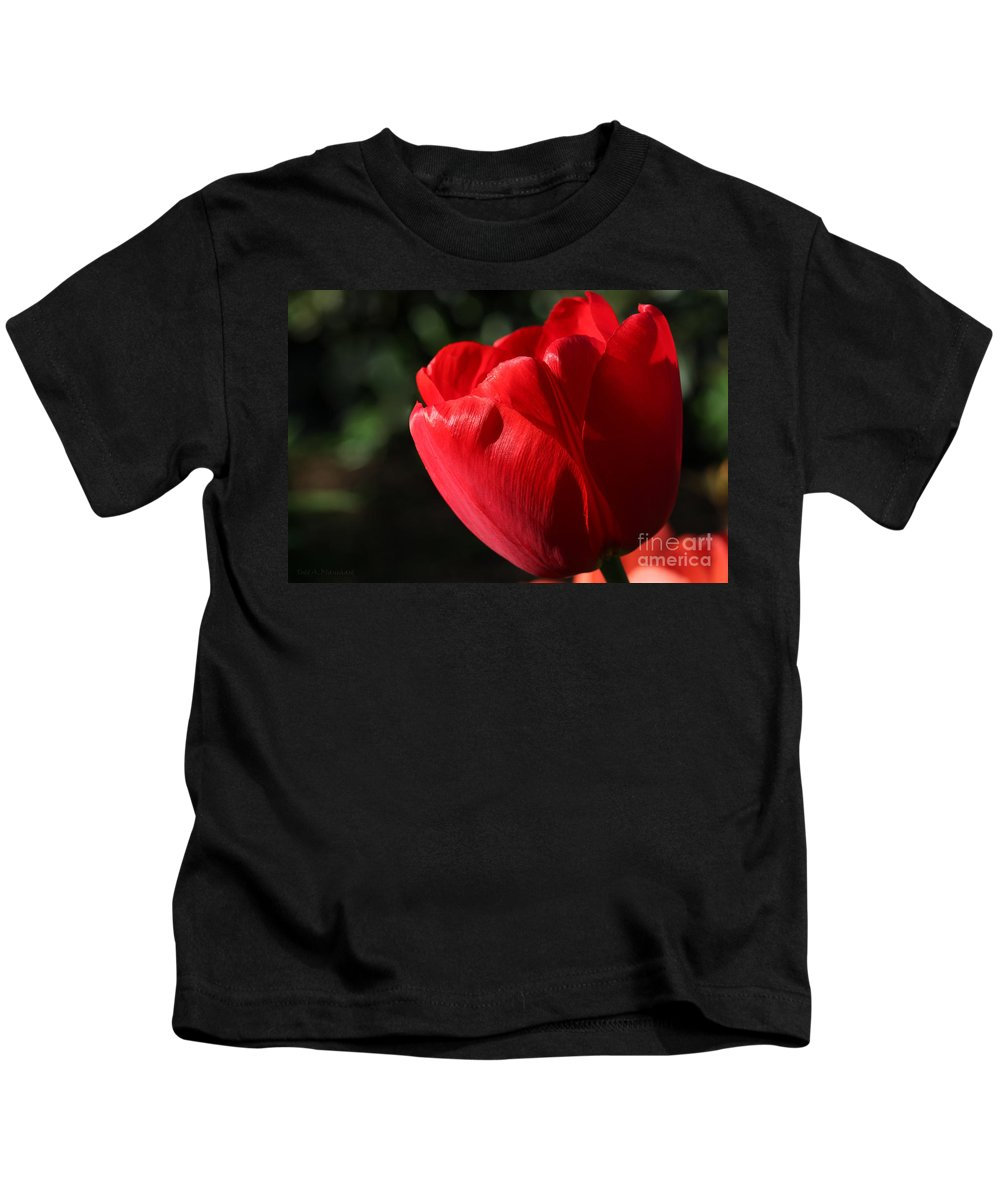 Flower Kids T-Shirt featuring the photograph Red Tulip by Todd Blanchard