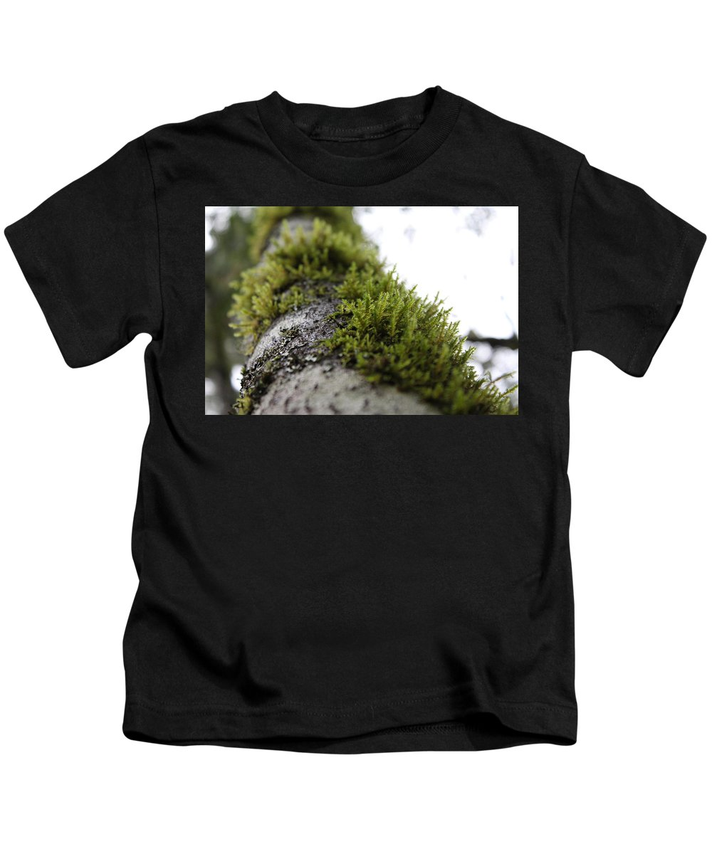 California Kids T-Shirt featuring the photograph Redwood Branches by Nicholas Miller