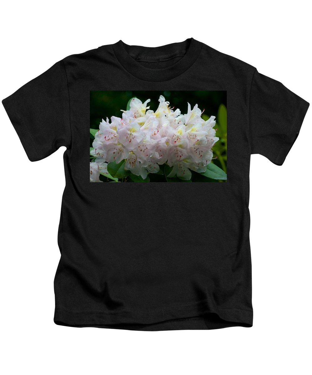 Rhododendrons In Bloom Kids T-Shirt featuring the photograph Rhododendrons by Allan Morrison