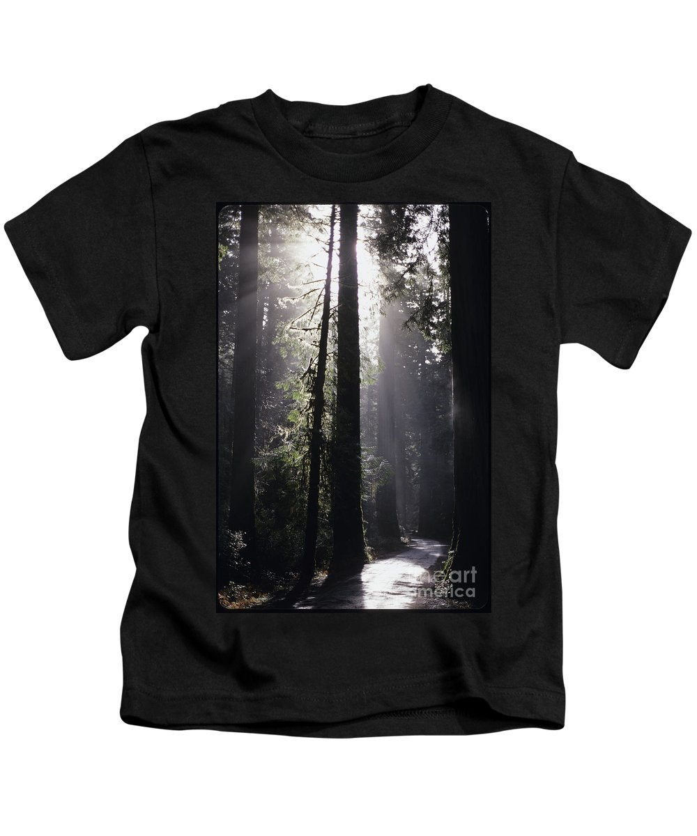 Travel Kids T-Shirt featuring the photograph Road Through Redwoods by Jim Corwin