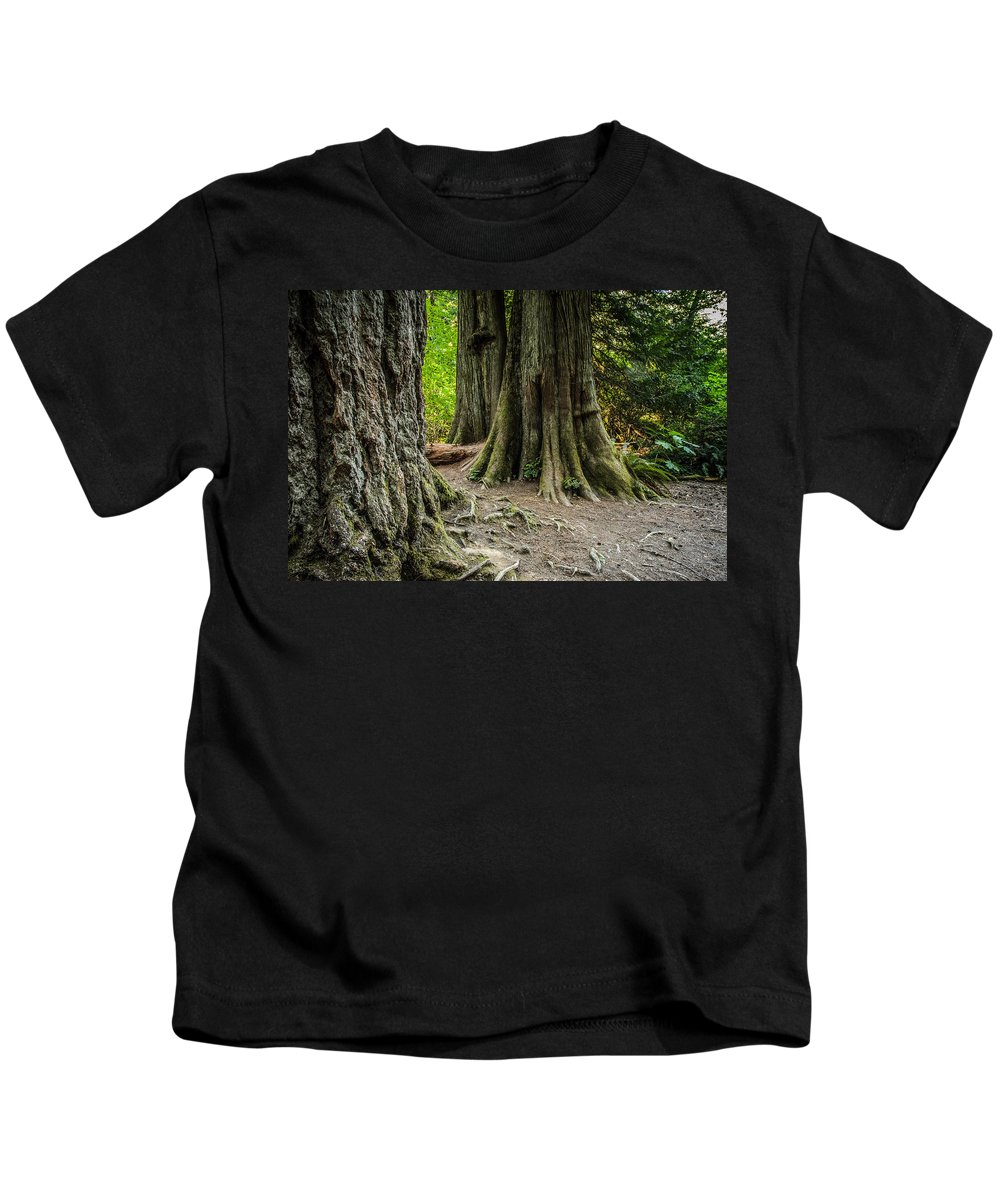 Old Growth Forest Kids T-Shirt featuring the photograph Root Feet Collection 1 by Roxy Hurtubise