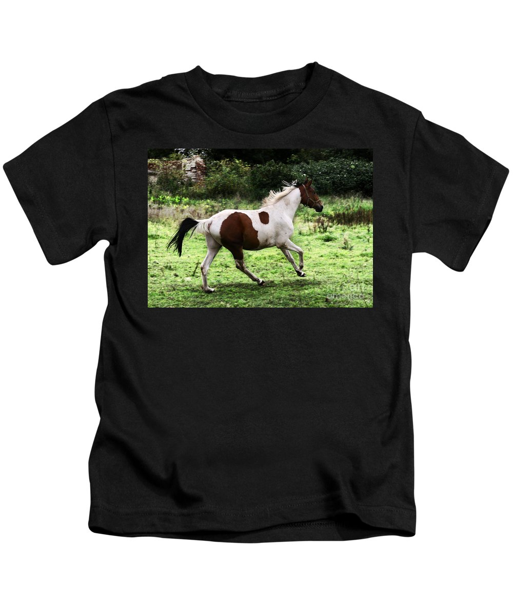 Pinto Kids T-Shirt featuring the photograph Running Pinto Horse by Angel Ciesniarska