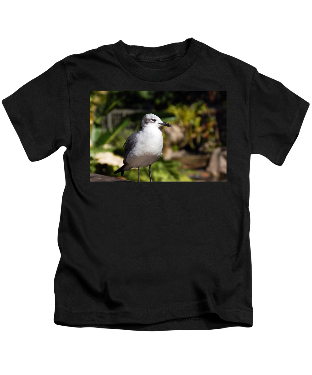 Seagull Kids T-Shirt featuring the photograph Seagull by Aimee L Maher ALM GALLERY