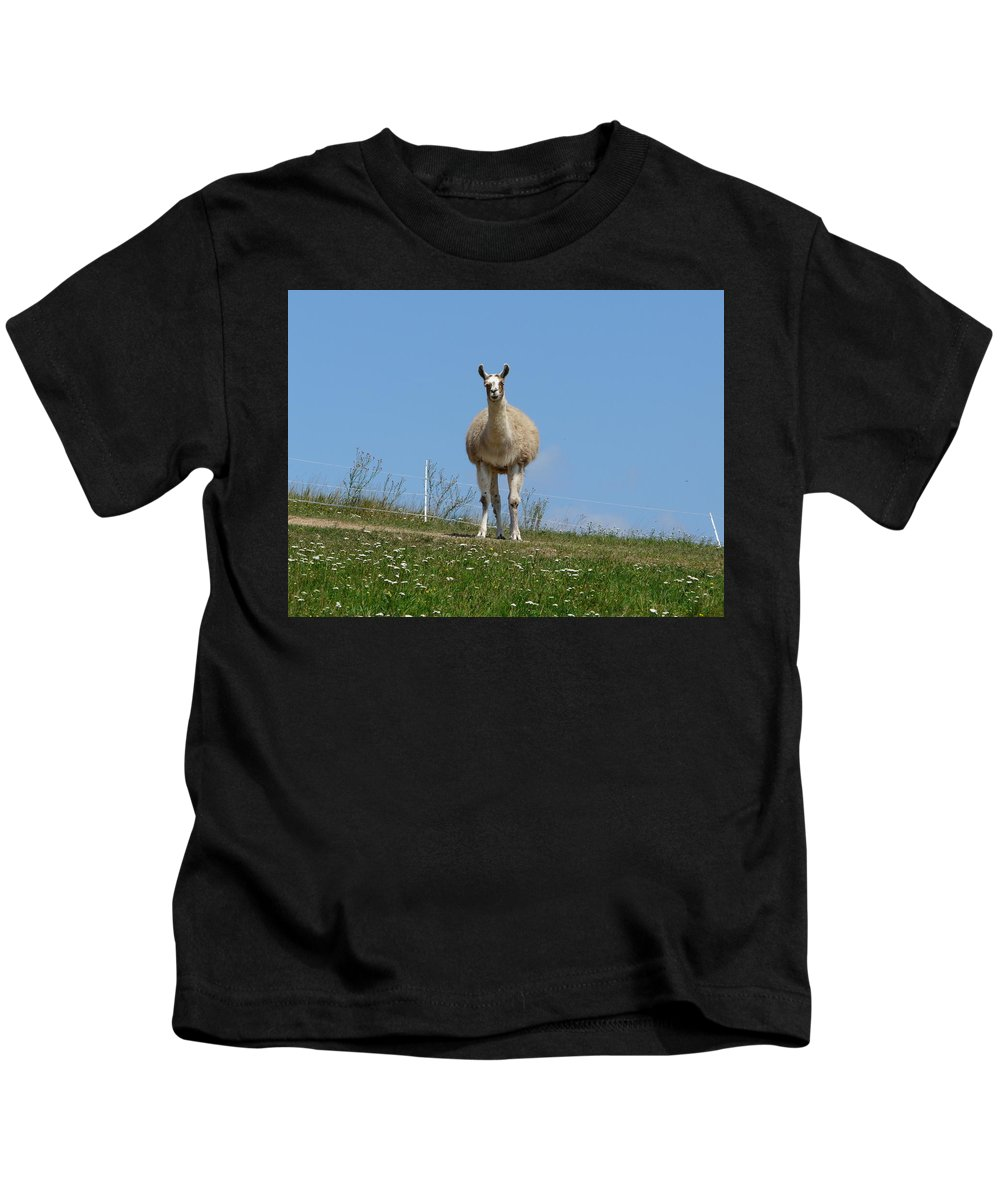 Lama Kids T-Shirt featuring the photograph Sentinel by Valerie Ornstein