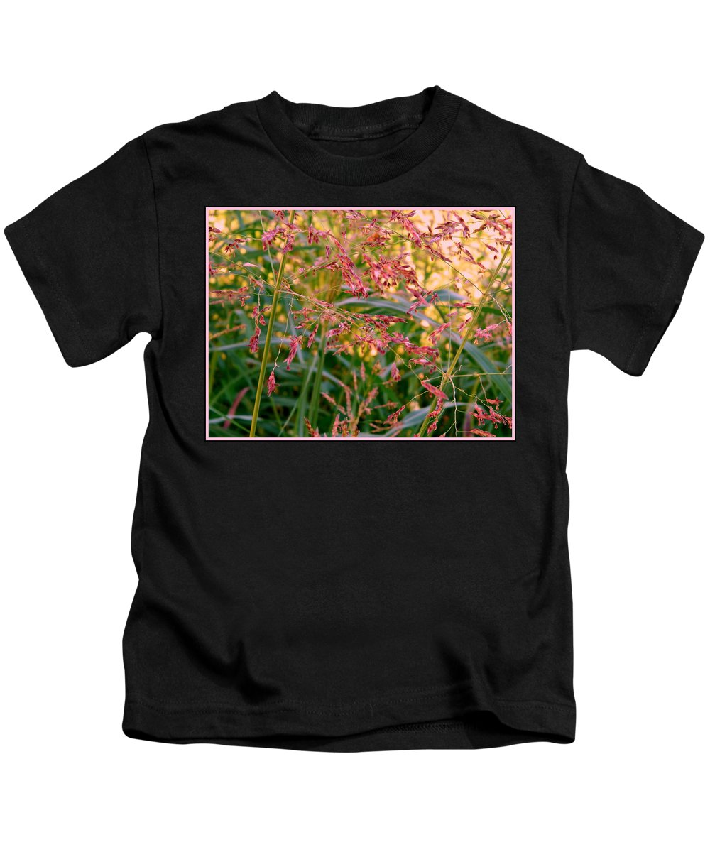 Grass Kids T-Shirt featuring the photograph September Grasses by Kathy Barney