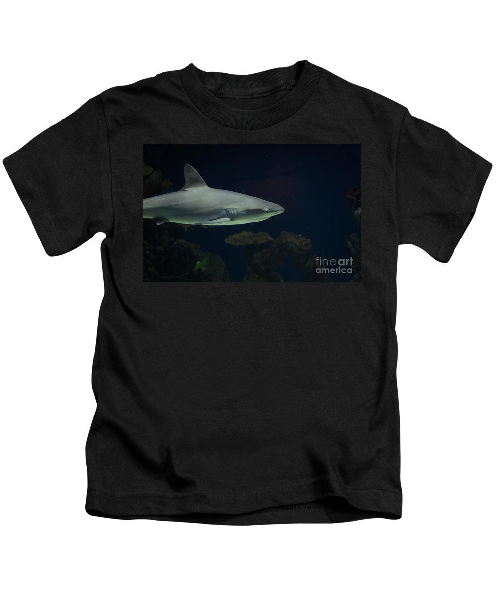 Fish Kids T-Shirt featuring the photograph Shark by Shaun Wilkinson