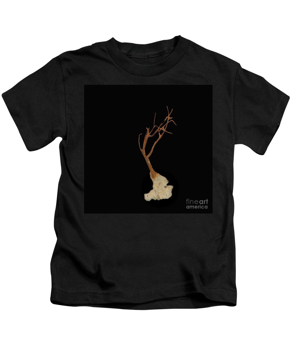 Nature Kids T-Shirt featuring the photograph Shell Study 3 Black by Skip Willits