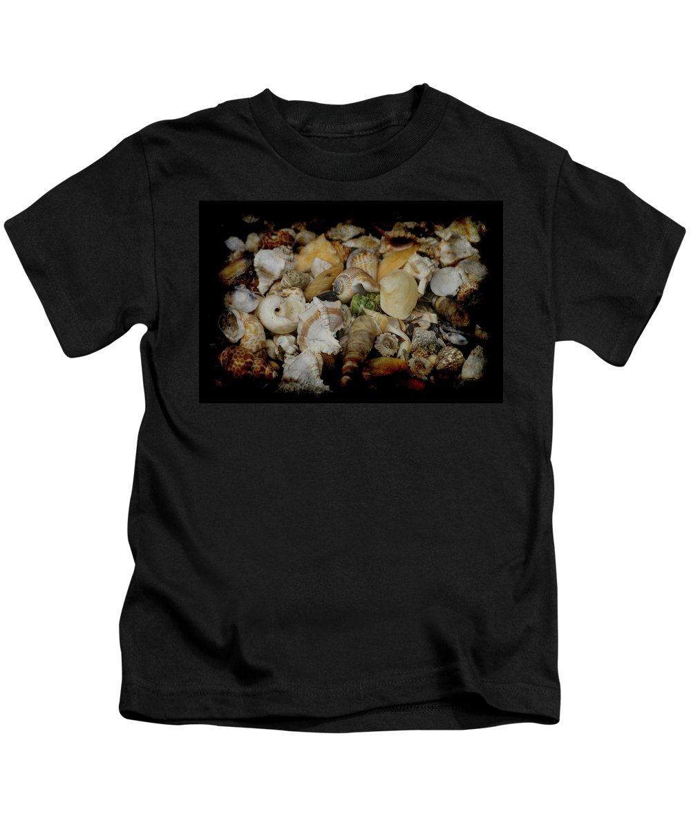 Shells Kids T-Shirt featuring the photograph Shells by Ernie Echols