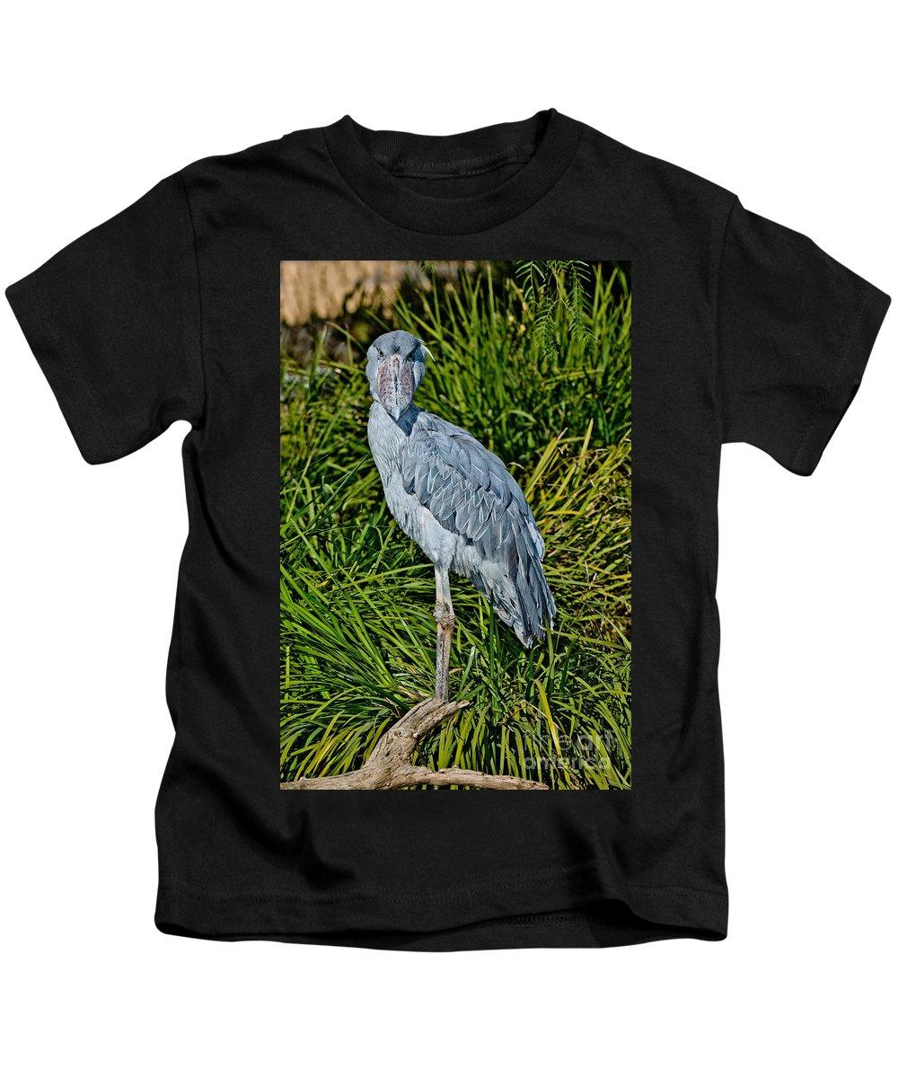 Animal Kids T-Shirt featuring the photograph Shoebill Stork by Anthony Mercieca