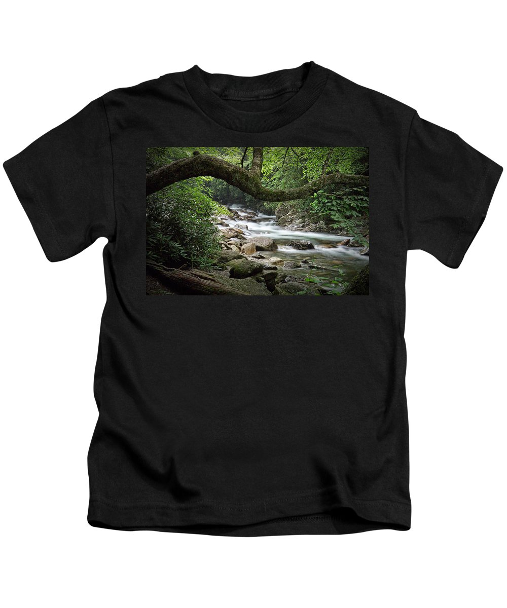 Art Kids T-Shirt featuring the photograph Smokey Mountain Stream. No 547 by Randall Nyhof