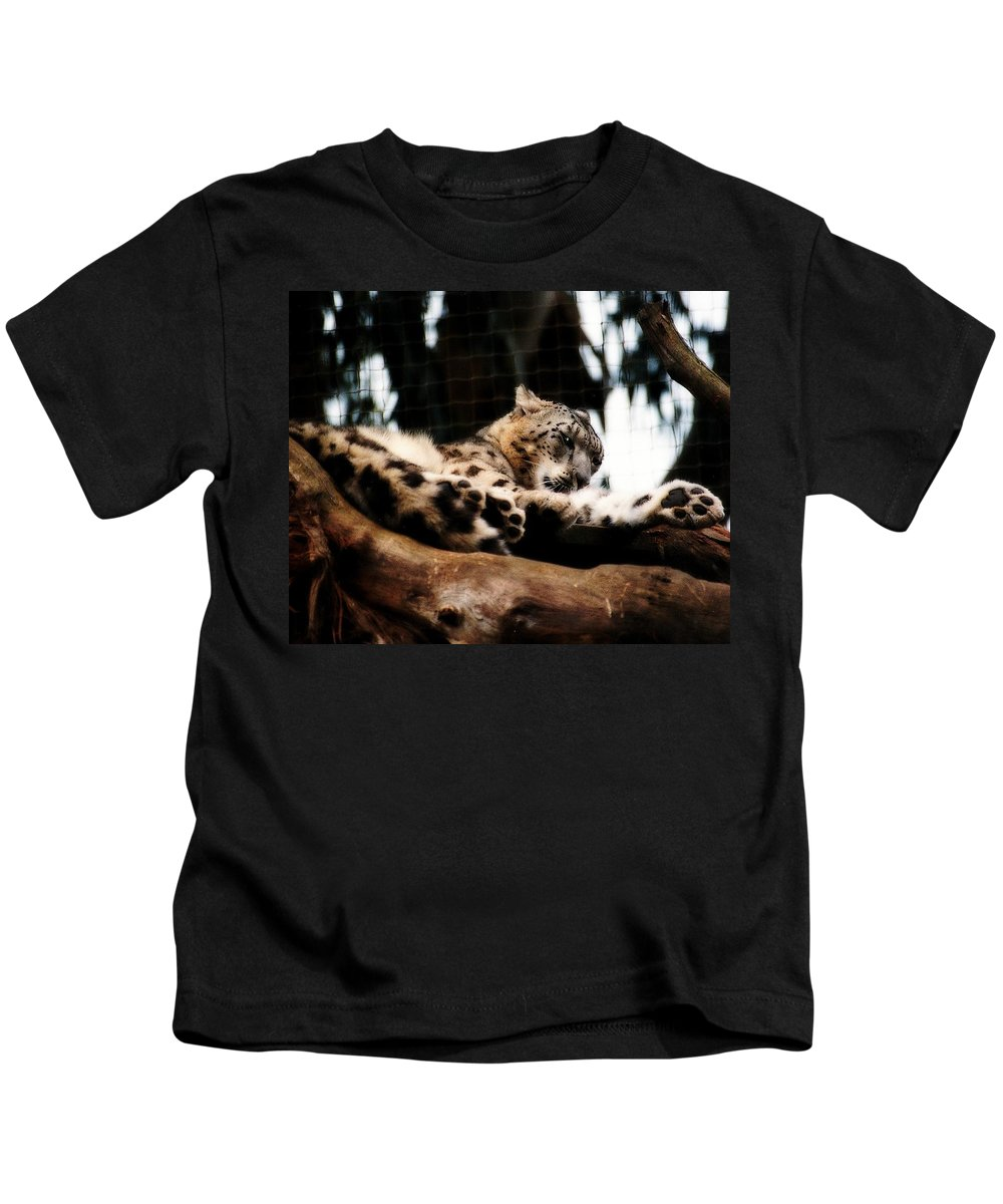 Wildcat Kids T-Shirt featuring the photograph Snow Leopard by Elaine Burlew