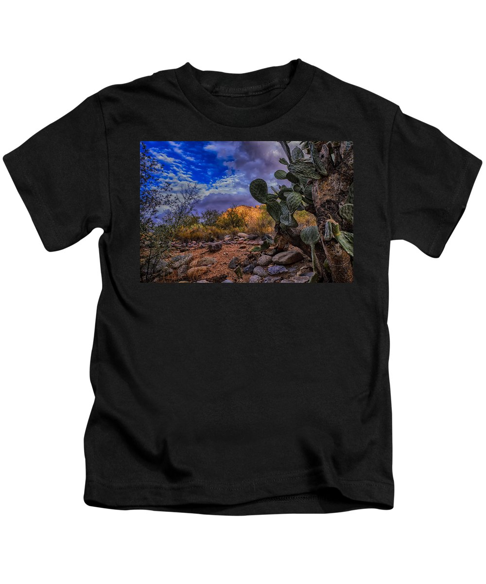 2013 Kids T-Shirt featuring the photograph Sonoran Desert 54 by Mark Myhaver