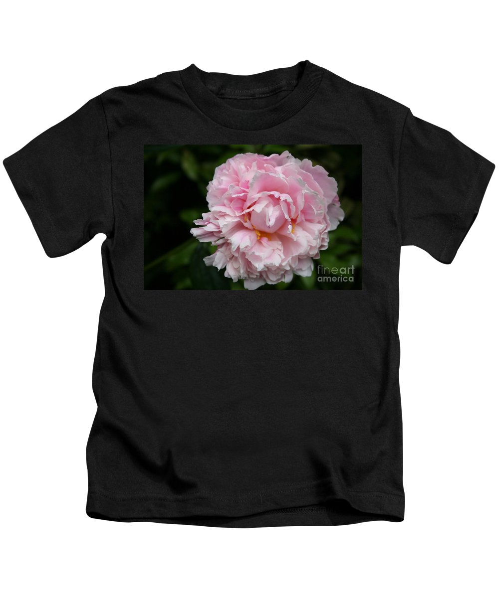 Peony Kids T-Shirt featuring the photograph Spring In Pink by Christiane Schulze Art And Photography