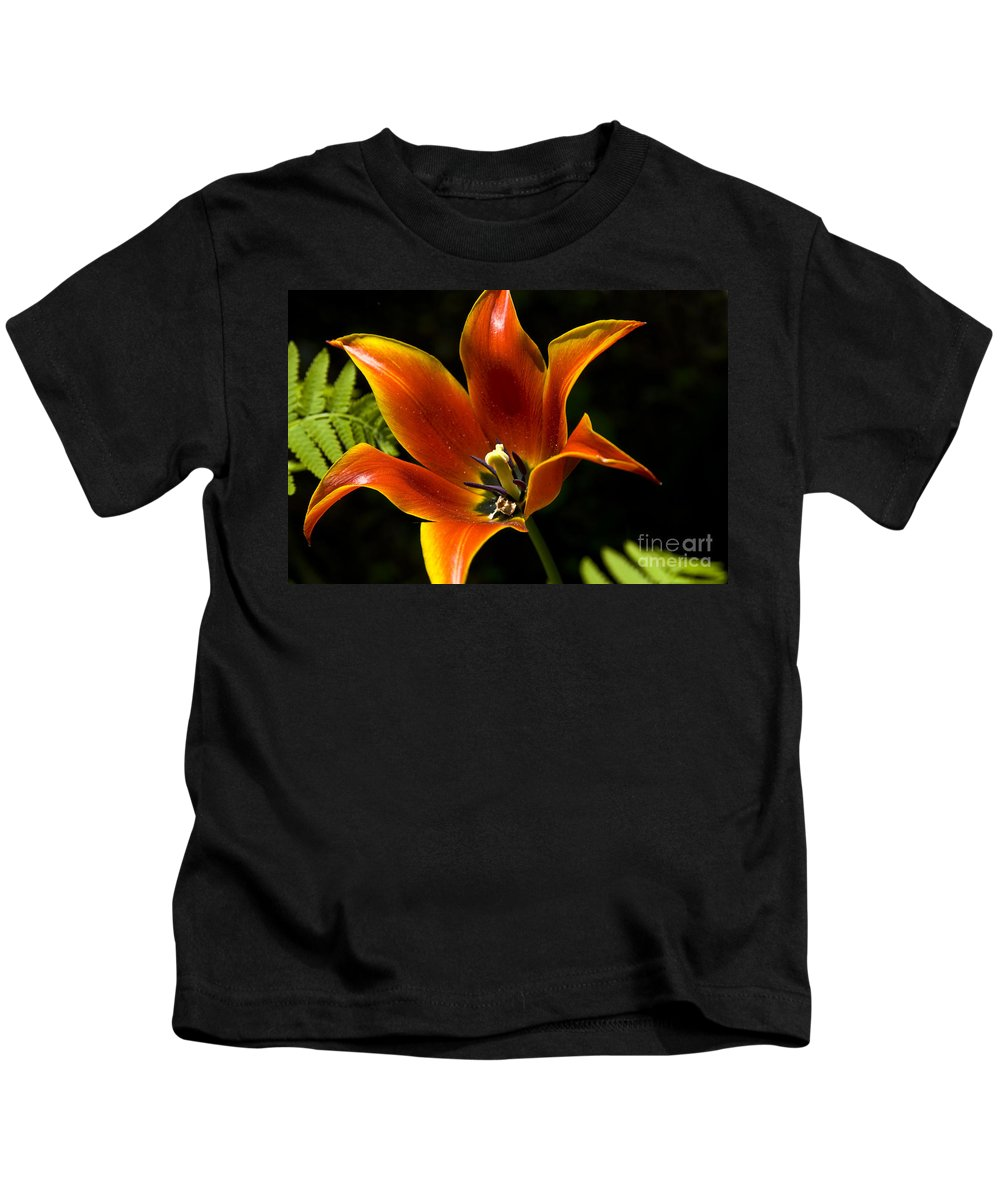 Flower Kids T-Shirt featuring the photograph Spring Tulip by Anthony Sacco