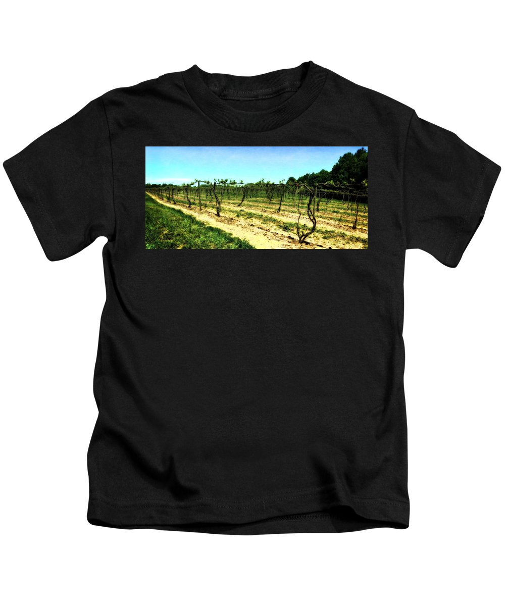 Grape Vines Kids T-Shirt featuring the photograph Spring Vineyard Ll by Michelle Calkins