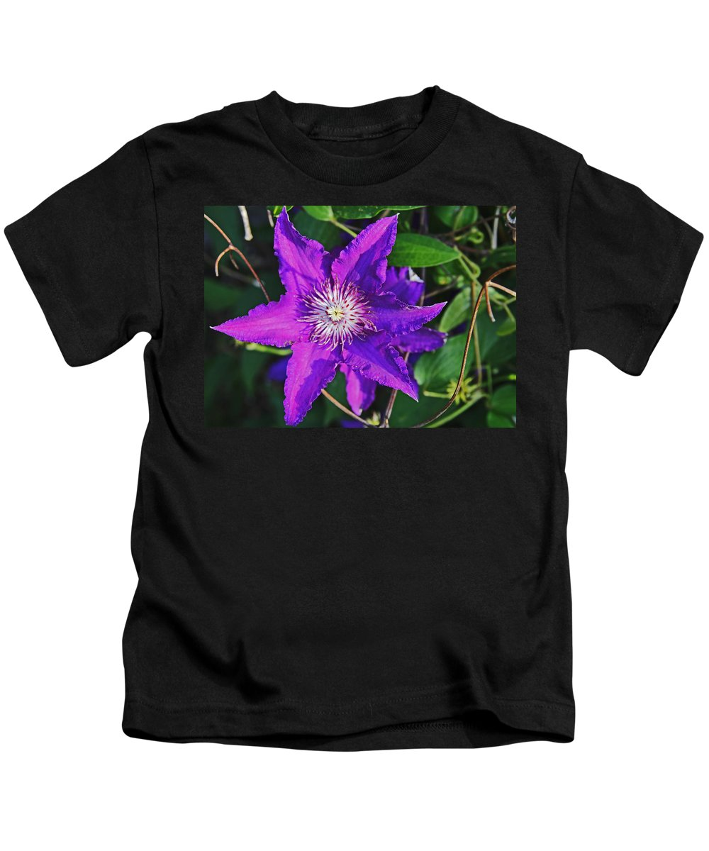 Purple Kids T-Shirt featuring the photograph Star by John Mullins