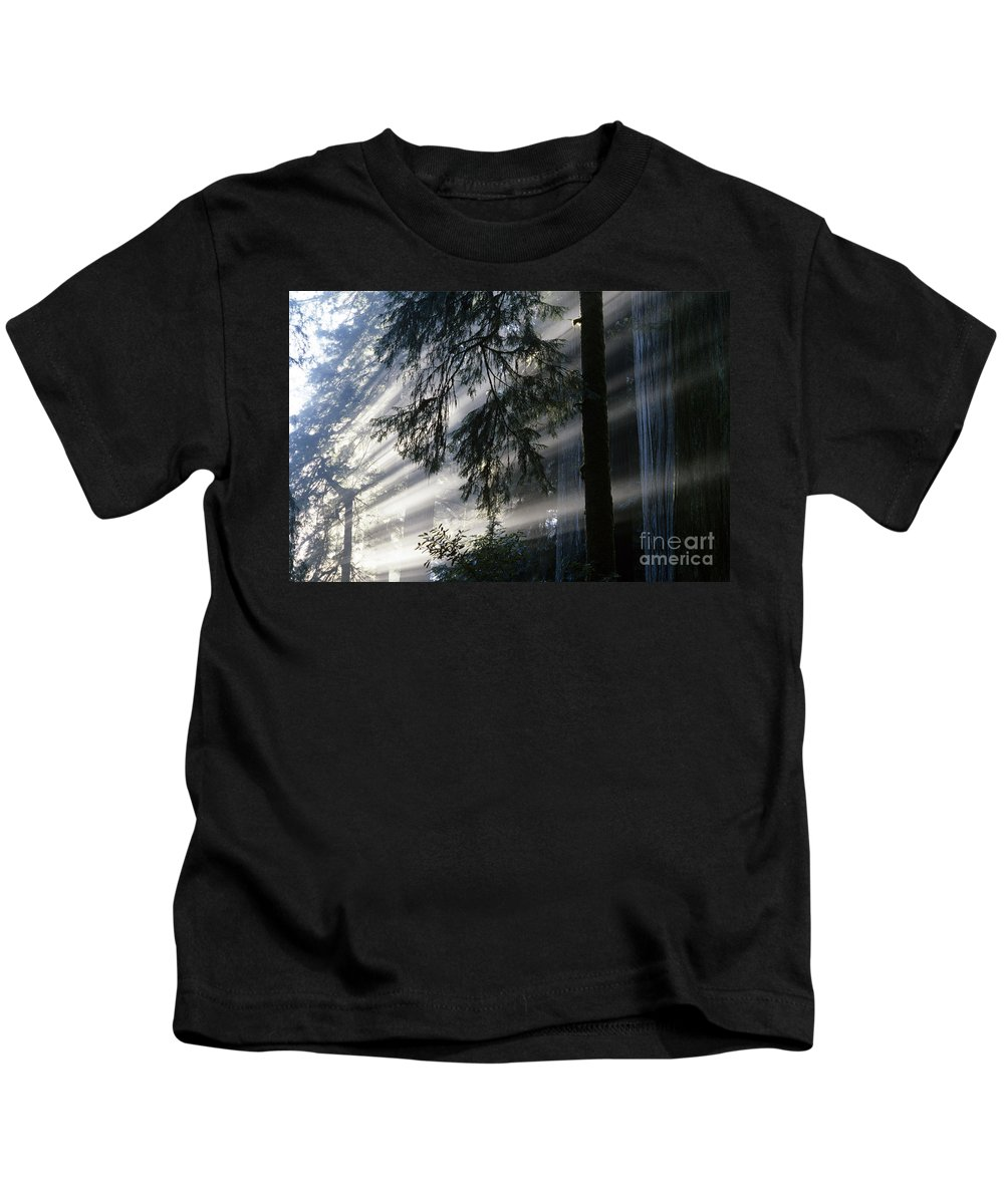 Nobody Kids T-Shirt featuring the photograph Stout Grove Redwoods With Sunrays Breaking Through Fog by Jim Corwin