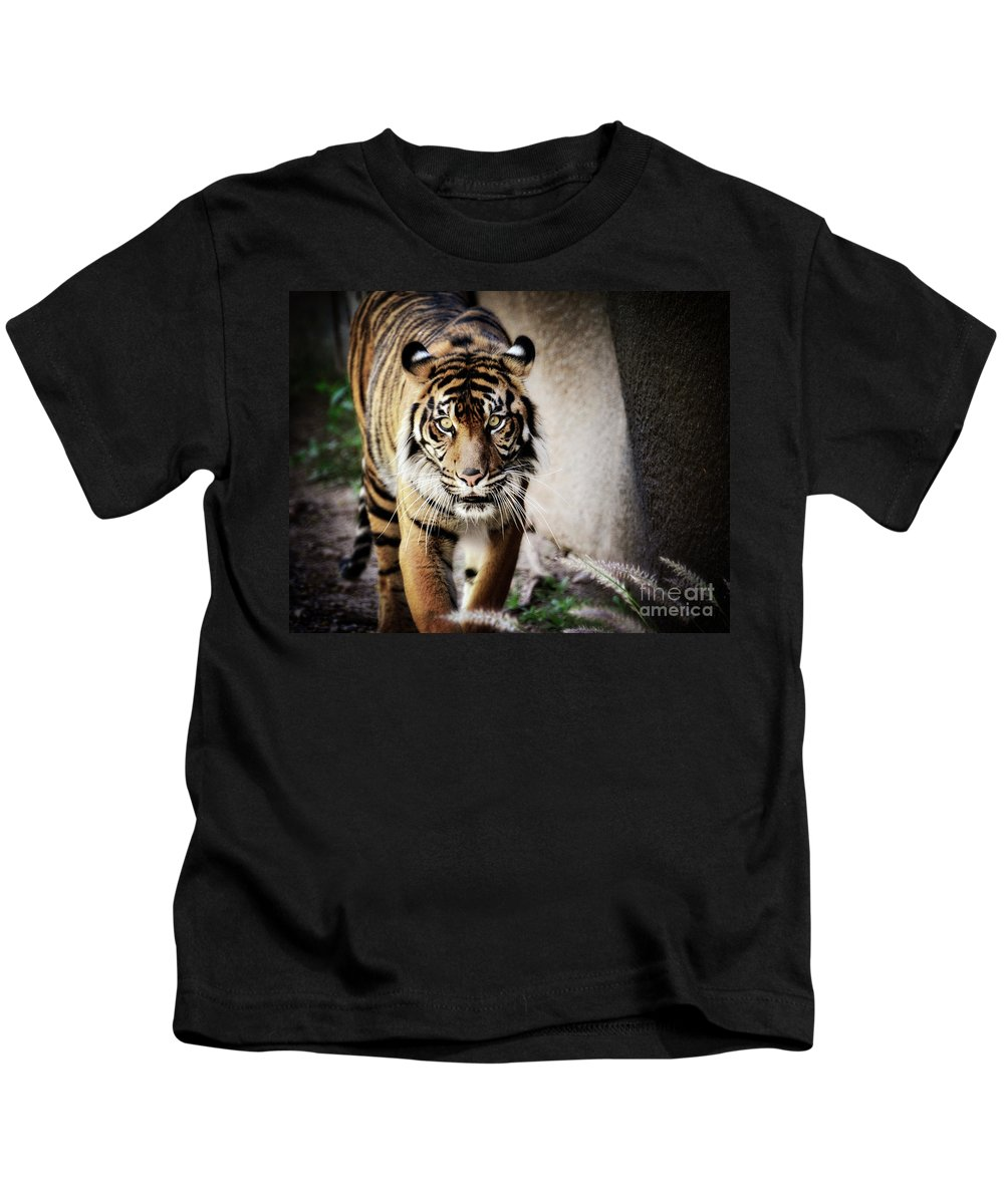 Sumatran Tiger Kids T-Shirt featuring the photograph Sumatran Tiger by Saija Lehtonen