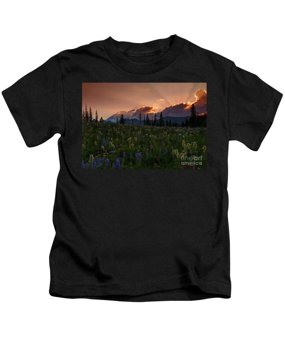 Mt. Rainier Kids T-Shirt featuring the photograph Sunbeam Garden by Mike Dawson
