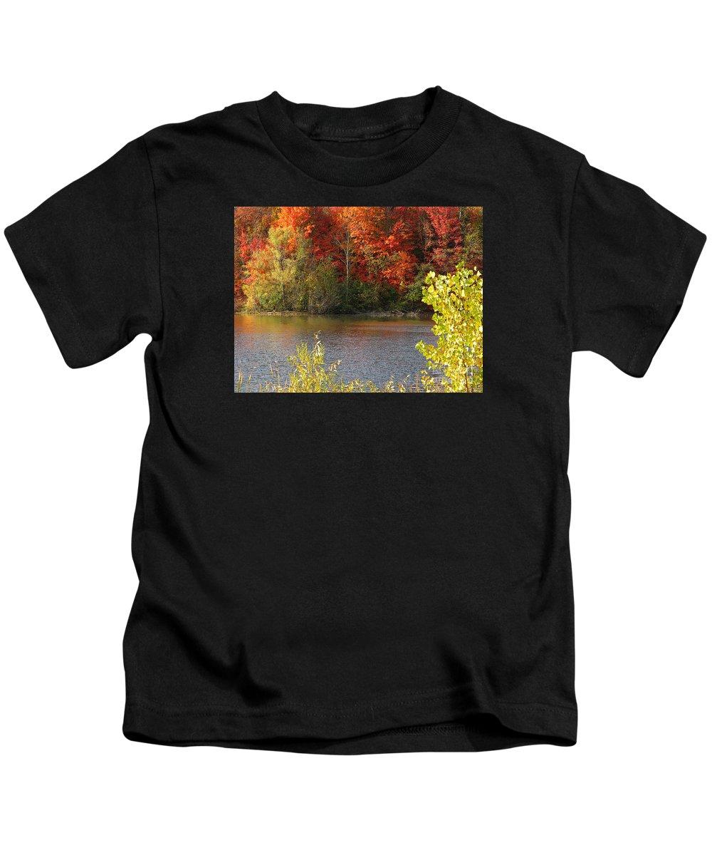 Autumn Kids T-Shirt featuring the photograph Sunlit Autumn by Ann Horn