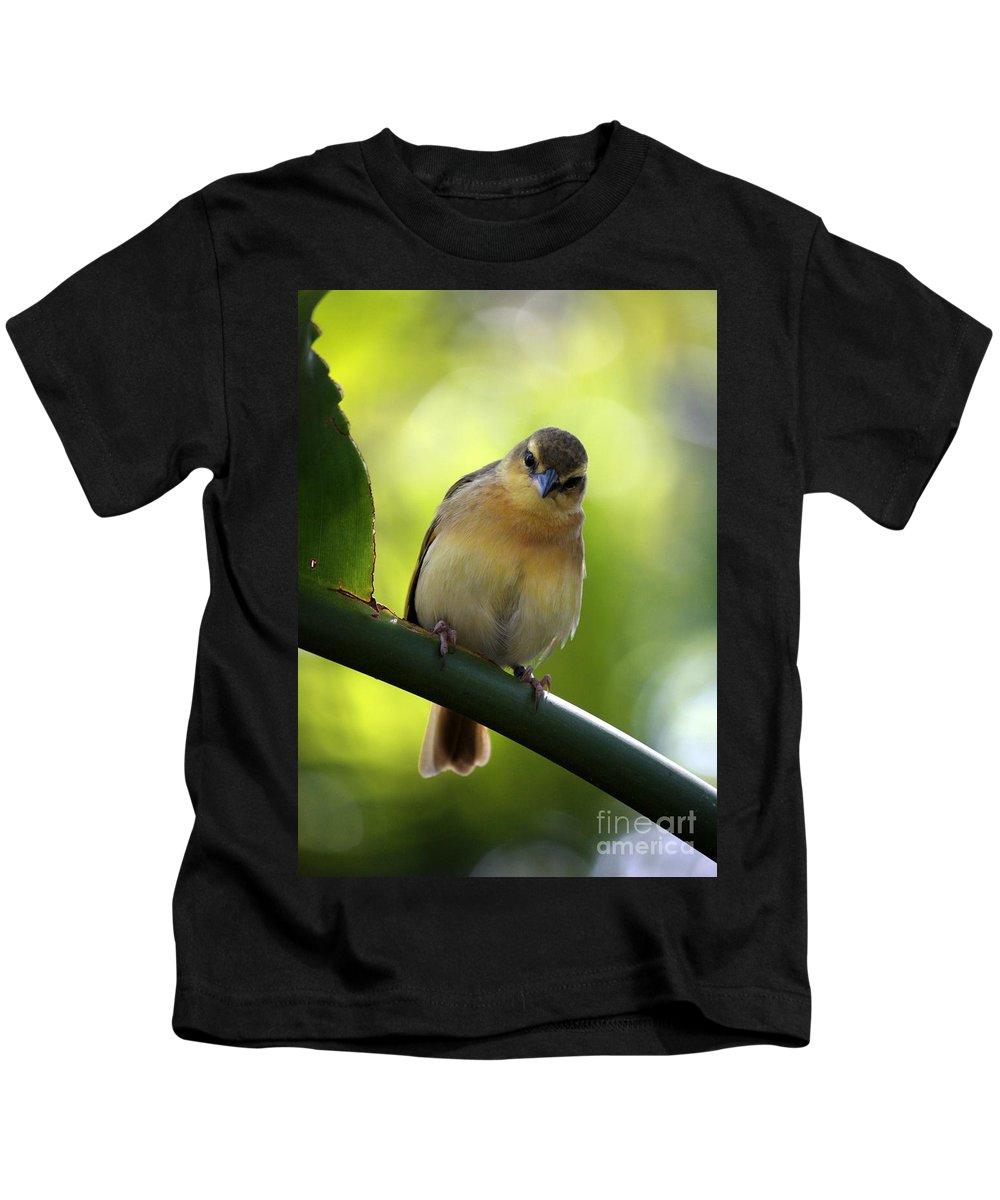 Animal Kids T-Shirt featuring the photograph Sweet Bird On Branch by Carol Groenen