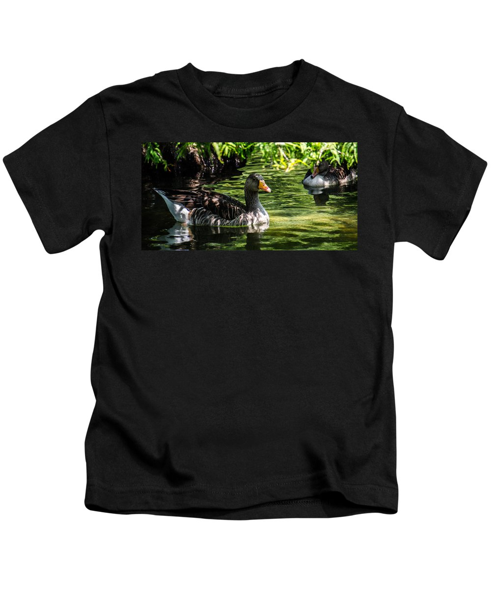 Animals Kids T-Shirt featuring the photograph Swimming Happily by Sotiris Filippou