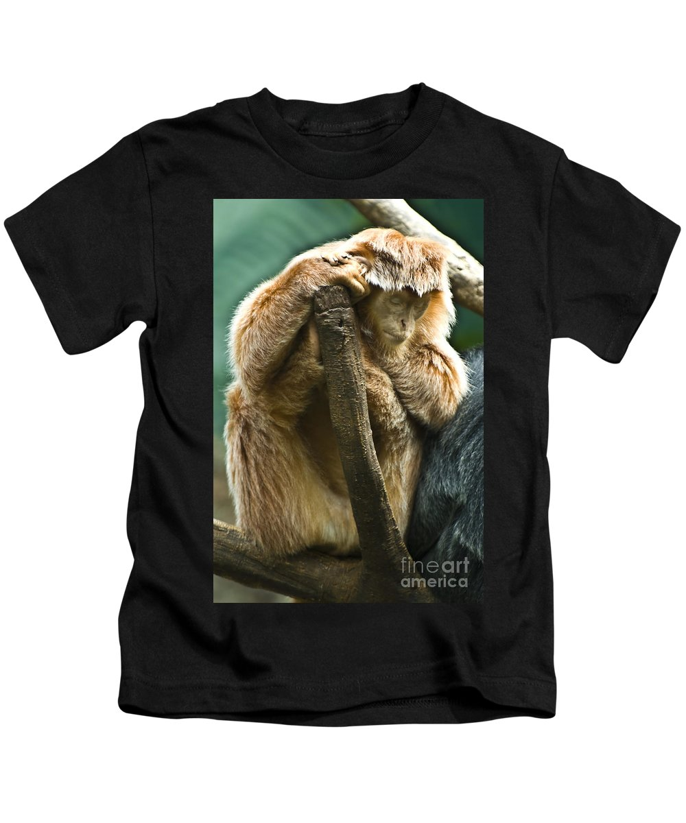 Ape Kids T-Shirt featuring the photograph Taking A Nap by Anthony Sacco