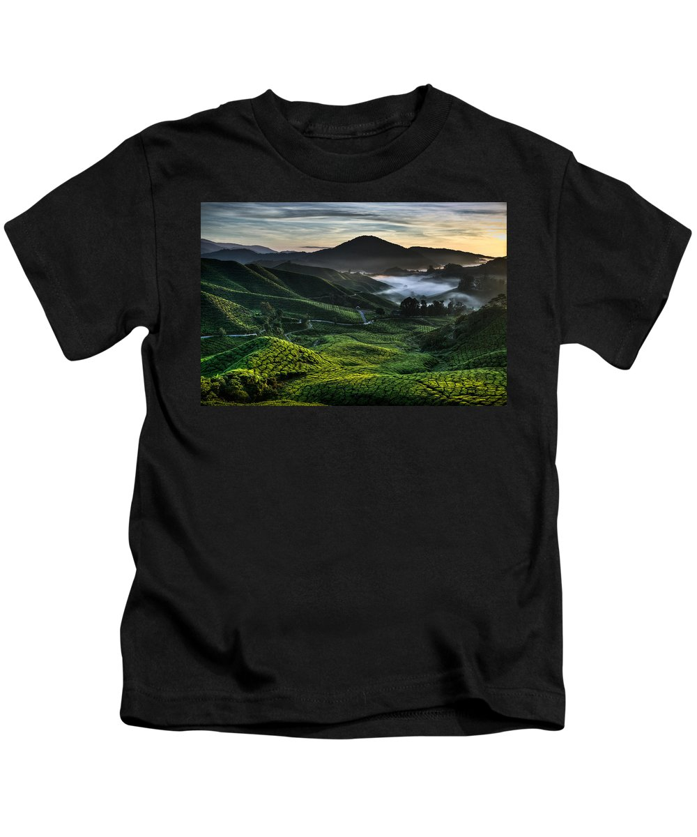 Tea Plantation Kids T-Shirt featuring the photograph Tea Plantation At Dawn by Dave Bowman