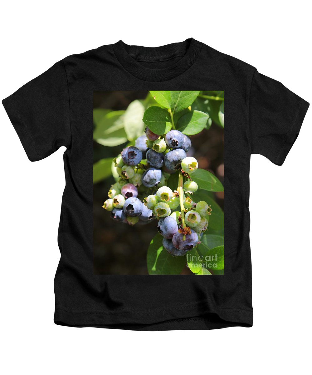 Blueberries Kids T-Shirt featuring the photograph The Freshest Blueberries by Carol Groenen