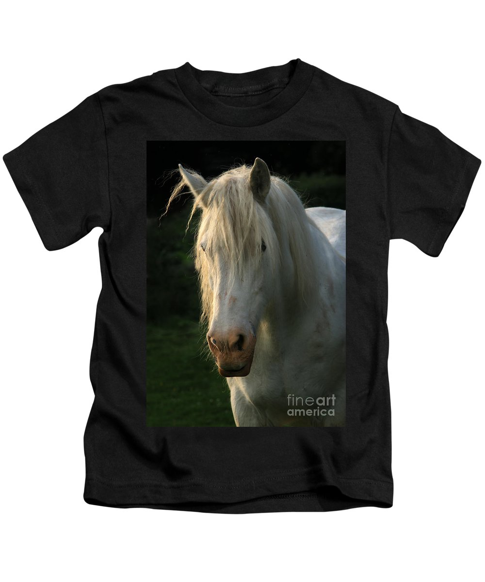 Unicorn Kids T-Shirt featuring the photograph The Light In The Mane by Angel Ciesniarska