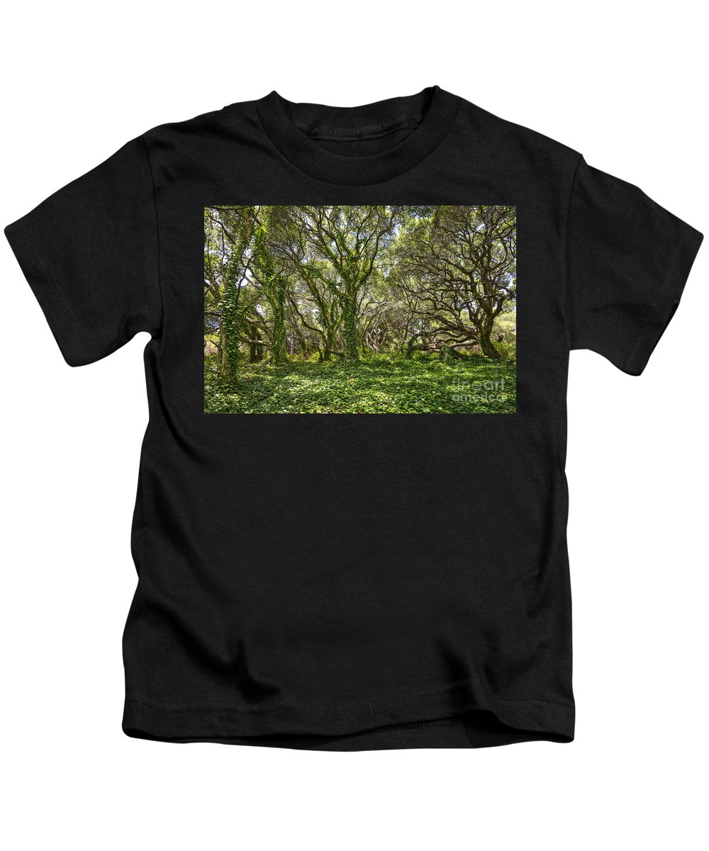 Los Osos Oak State Natural Reserve Kids T-Shirt featuring the photograph The Mysterious Forest - The Magical Trees Of The Los Osos Oak Reserve. by Jamie Pham
