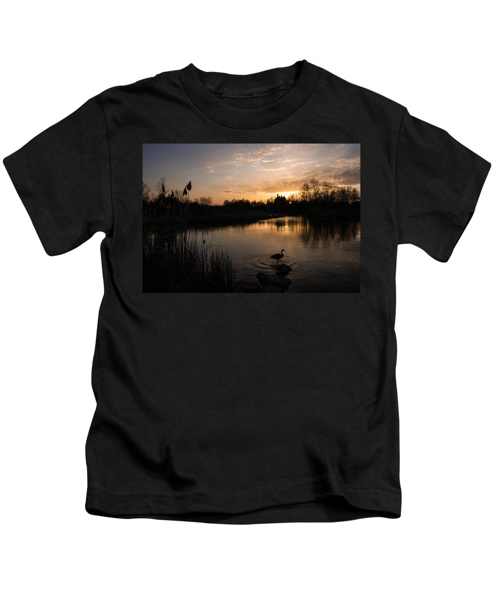 Posing Kids T-Shirt featuring the photograph The Posing Goose by Georgia Mizuleva