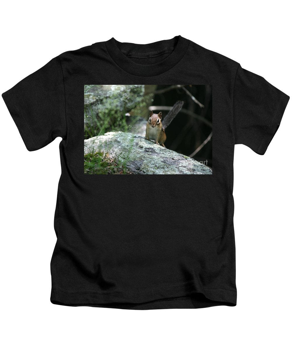 Chipmunk Kids T-Shirt featuring the photograph The Stand Off by Neal Eslinger