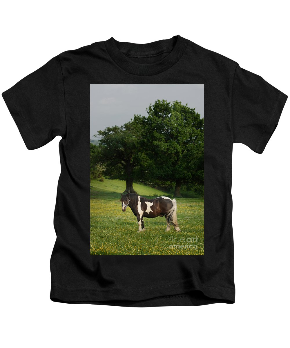 Horse Kids T-Shirt featuring the photograph The Sunny Meadow by Angel Ciesniarska