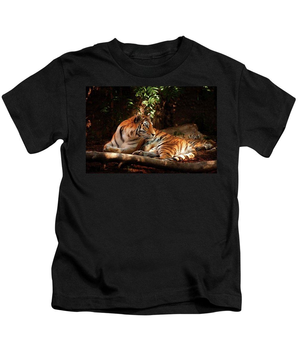 Tigress Photograph Kids T-Shirt featuring the photograph The Tigress by Jim Garrison