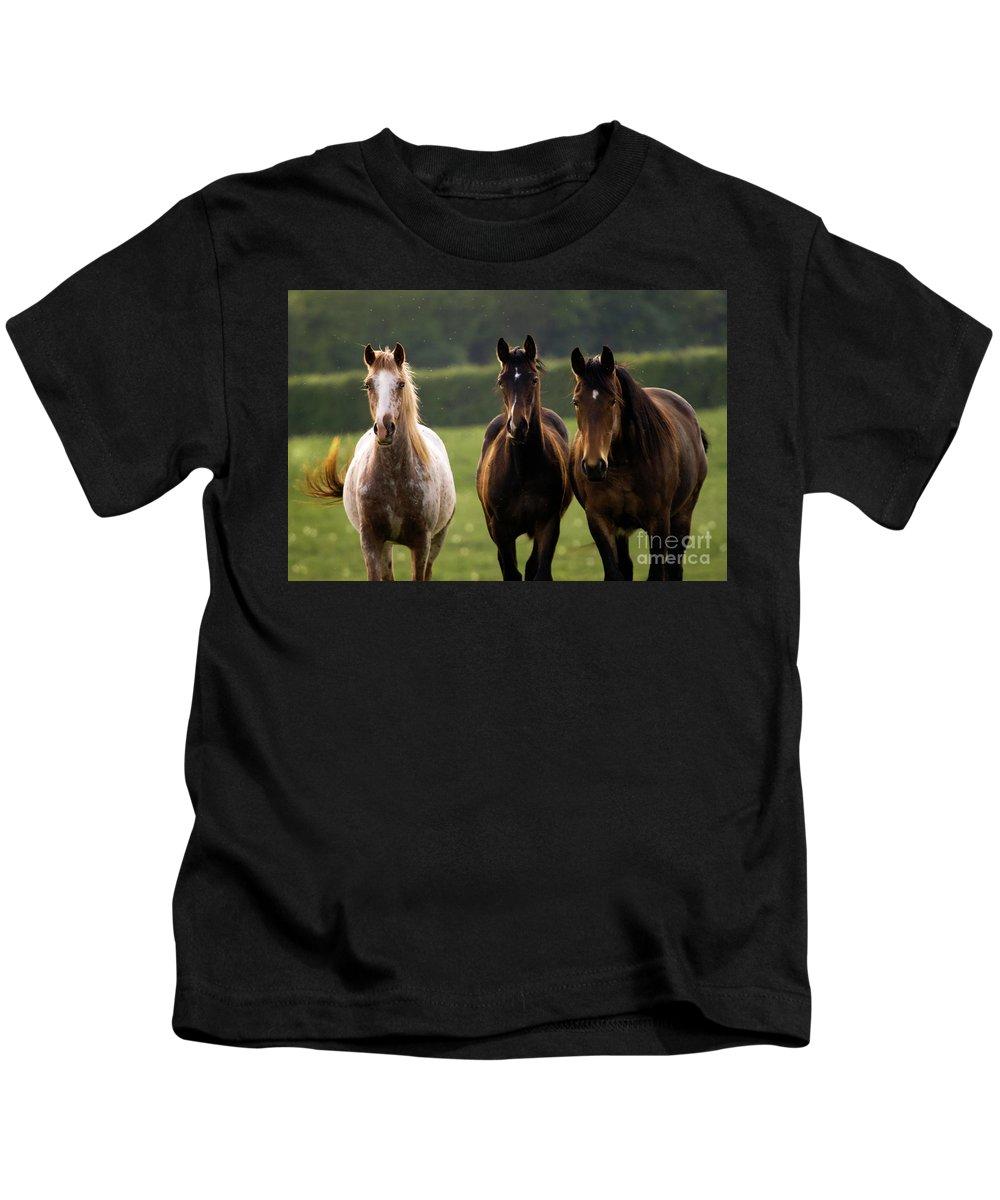 Horse Kids T-Shirt featuring the photograph Three Amigos by Angel Ciesniarska