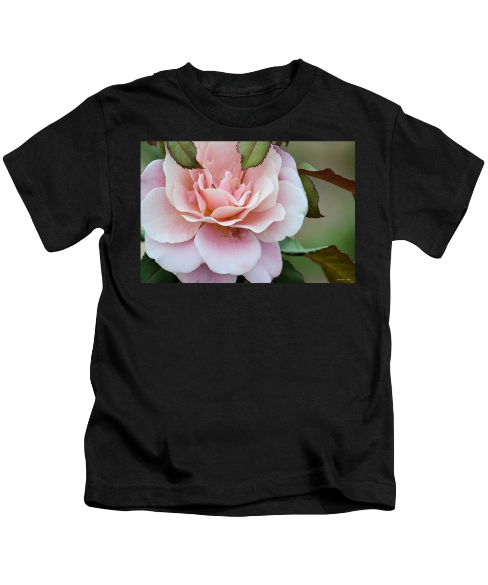 Tiara Pink Kids T-Shirt featuring the photograph Tiara Pink by Maria Urso