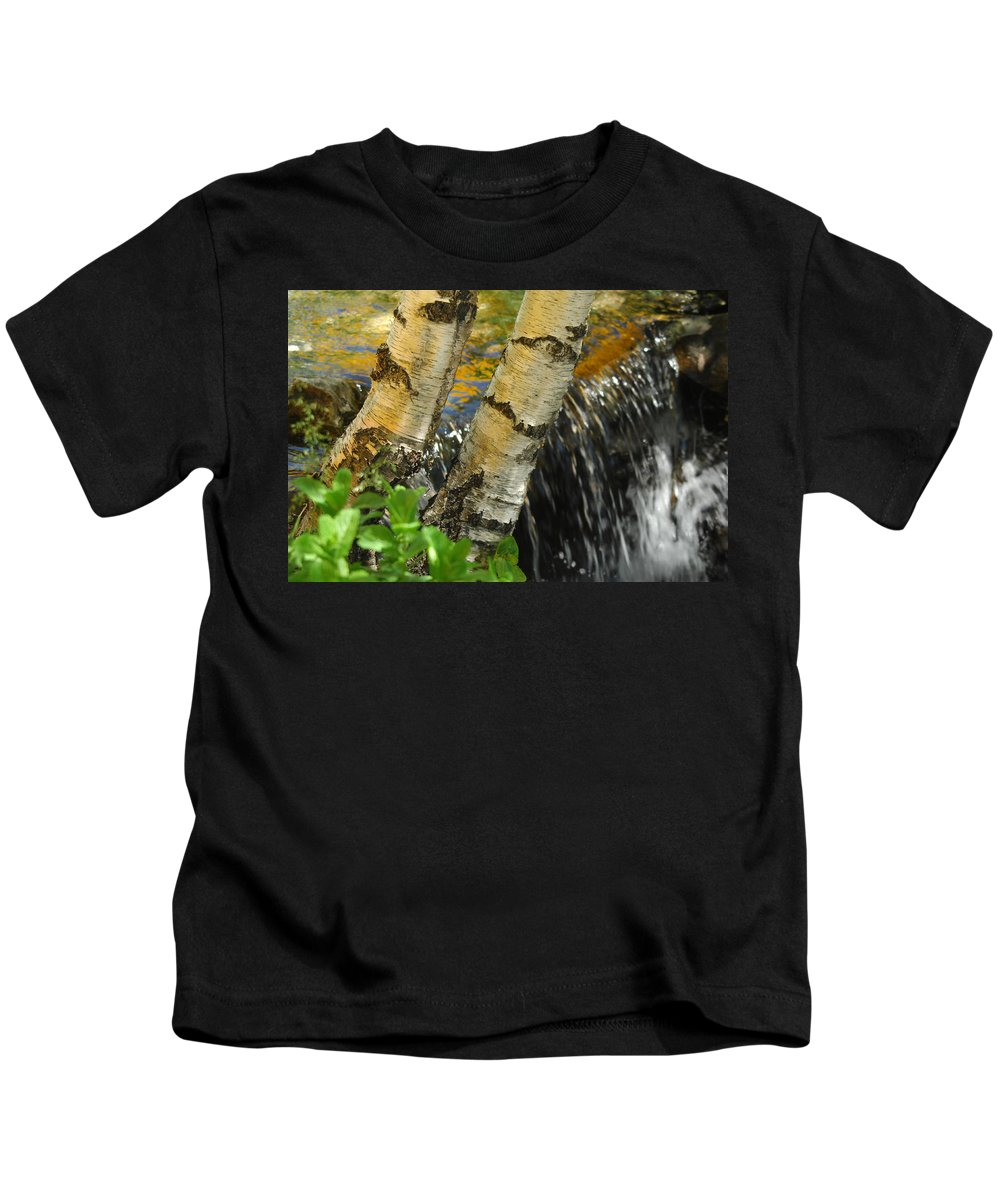 Birch Trees Kids T-Shirt featuring the photograph Totally Birching by Donna Blackhall