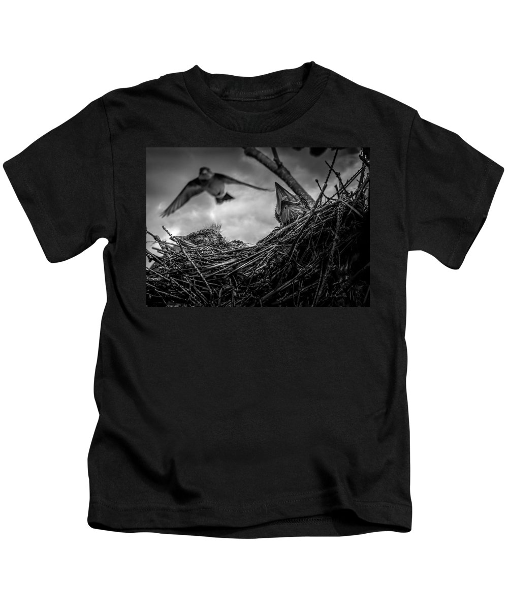 Swallow Kids T-Shirt featuring the photograph Tree Swallows In Nest by Bob Orsillo