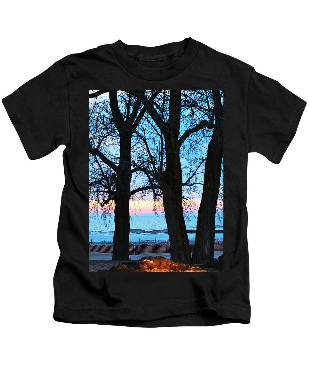 Lake Michigan Kids T-Shirt featuring the photograph Trees And Sunset by Linda Kerkau